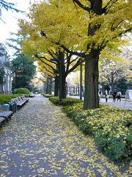 __200512aogaku_013