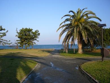 200612chiba_009