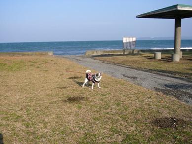 200612chiba_050