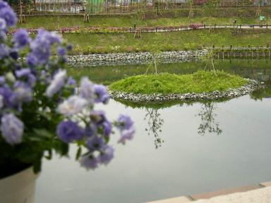 20065kouhan_004