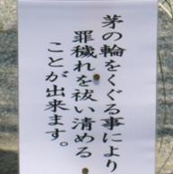 20067_100_1